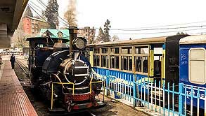 Darjeeling Extensive Tour