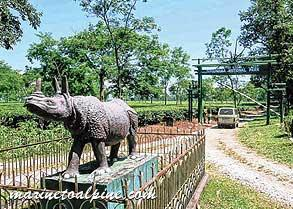Explore Gorumara Tour